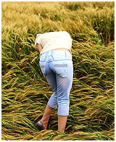 alice wets her jeans shorts in the wheat field 01