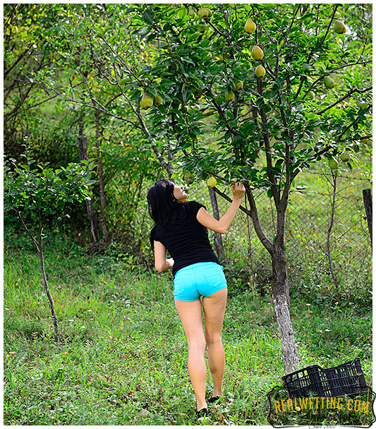 Picking fruits and wetting shorts